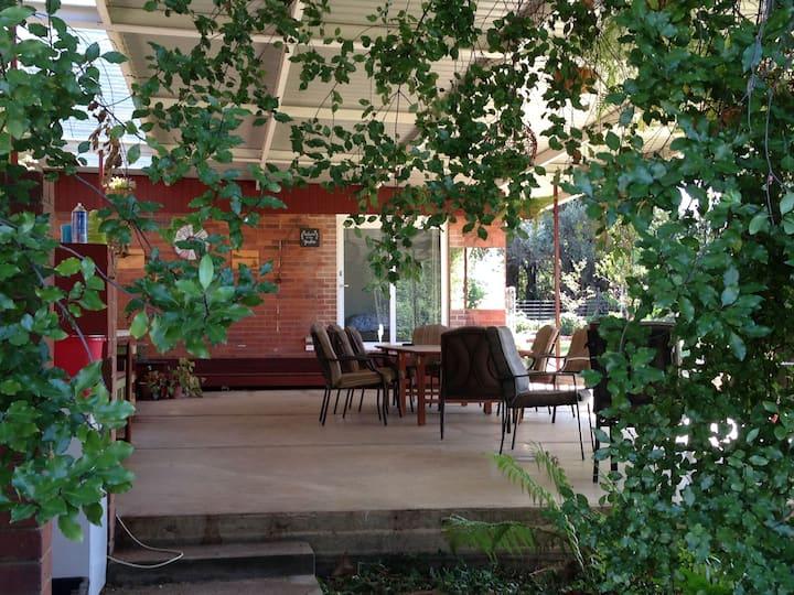 Sue's Sanctuary