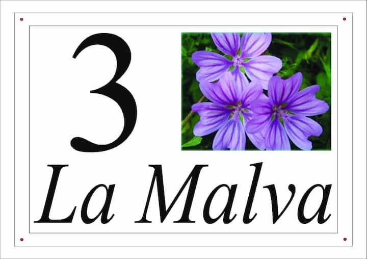 I fiori del Pollino - La Malva