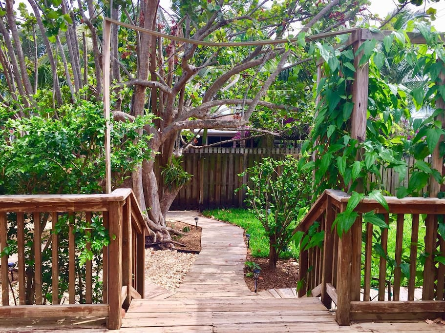 Beautiful garden oasis in Hollywood, Florida