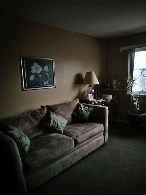 Cozy living room  with TV/ wireless Verizon FIOS