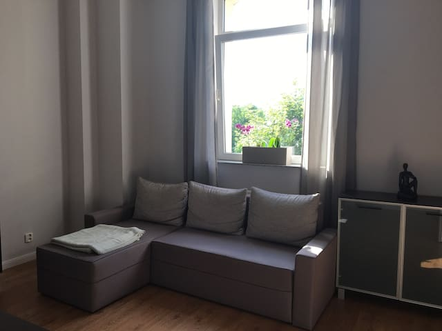 Sunny apartment with free parking