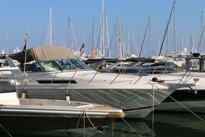 Wonderful Boat in Golfe Juan Vallauris