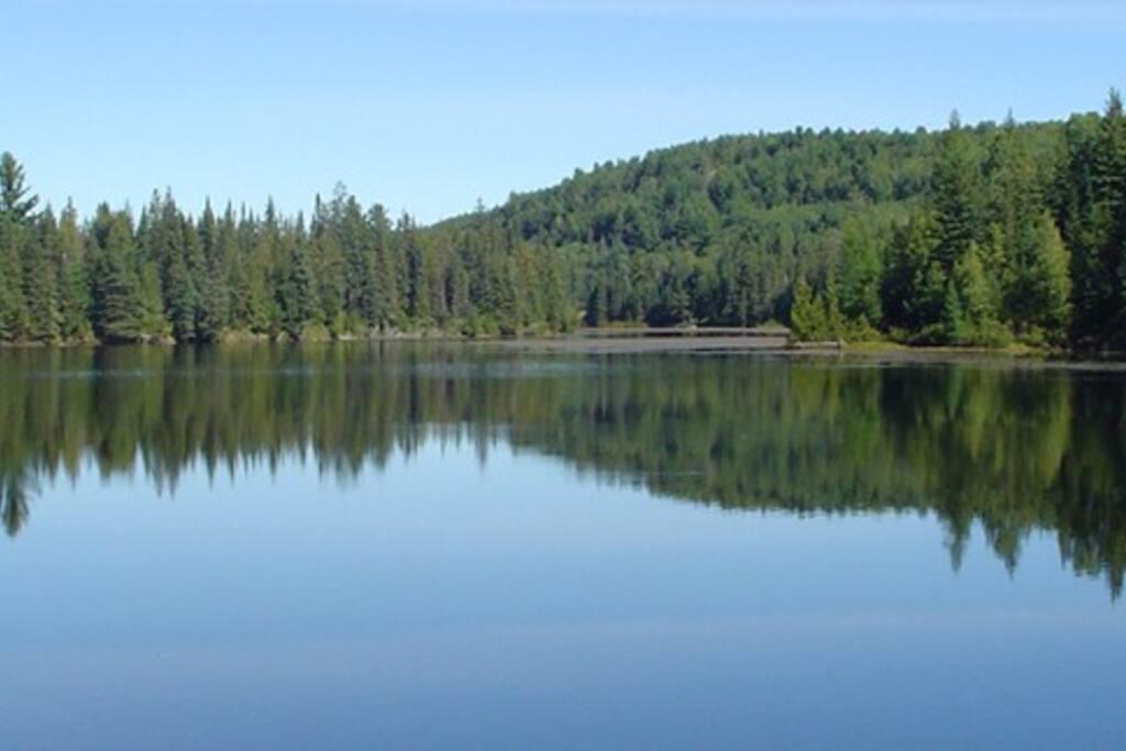 Lac Pierre en été