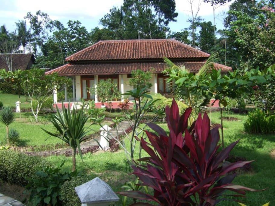 Gastenhuis Guesthouse Rumah Senang