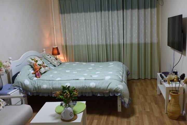 北京 三元桥 国展 柳芳地铁 西坝河南里 全新豪华两居室