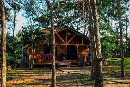 Hermosa cabaña en el campo a 15 min de la playa!!!