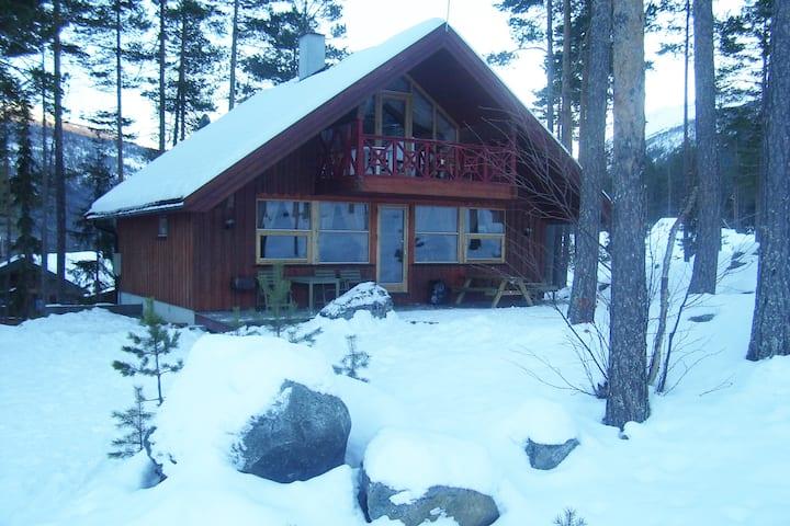 Oplev Norge i Uvdal i hytte helt tæt på løjpen.