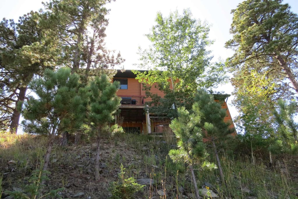 3rd floor deck overlooks views of the forest