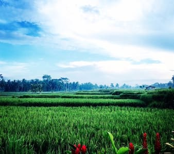 Secret Private Room with Rice field - Ubud