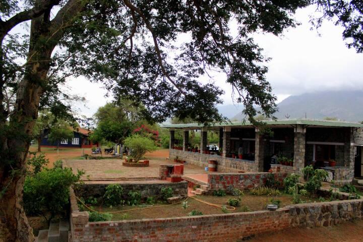 An erstwhile Hunting Lodge - Masinagudi - Bed & Breakfast