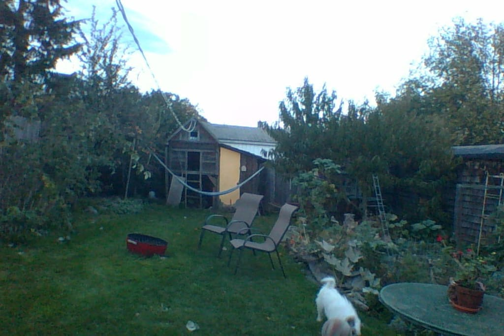 Your view and private garden (well, private but for Taz and the hens).