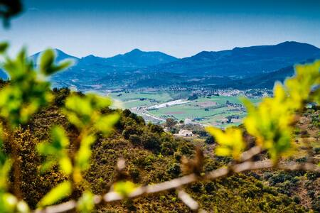 Gorgeous Andaluz Farmhouse Malaga 3 - Colmenar - บ้าน