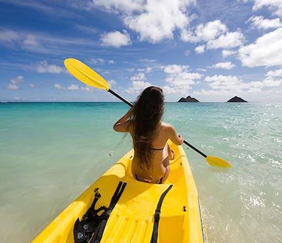 Available Monthly! Sarasota Beach Vacation - Sleeps 25!