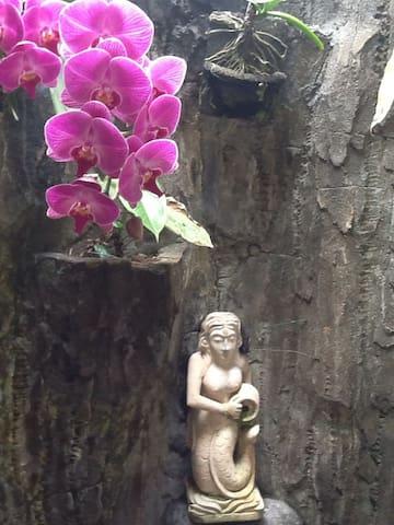 LokaSeranas BnB Orchid Room - Gianyar - Bed & Breakfast
