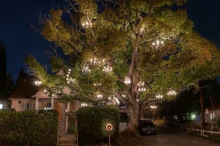The Chandelier Tree.  House.