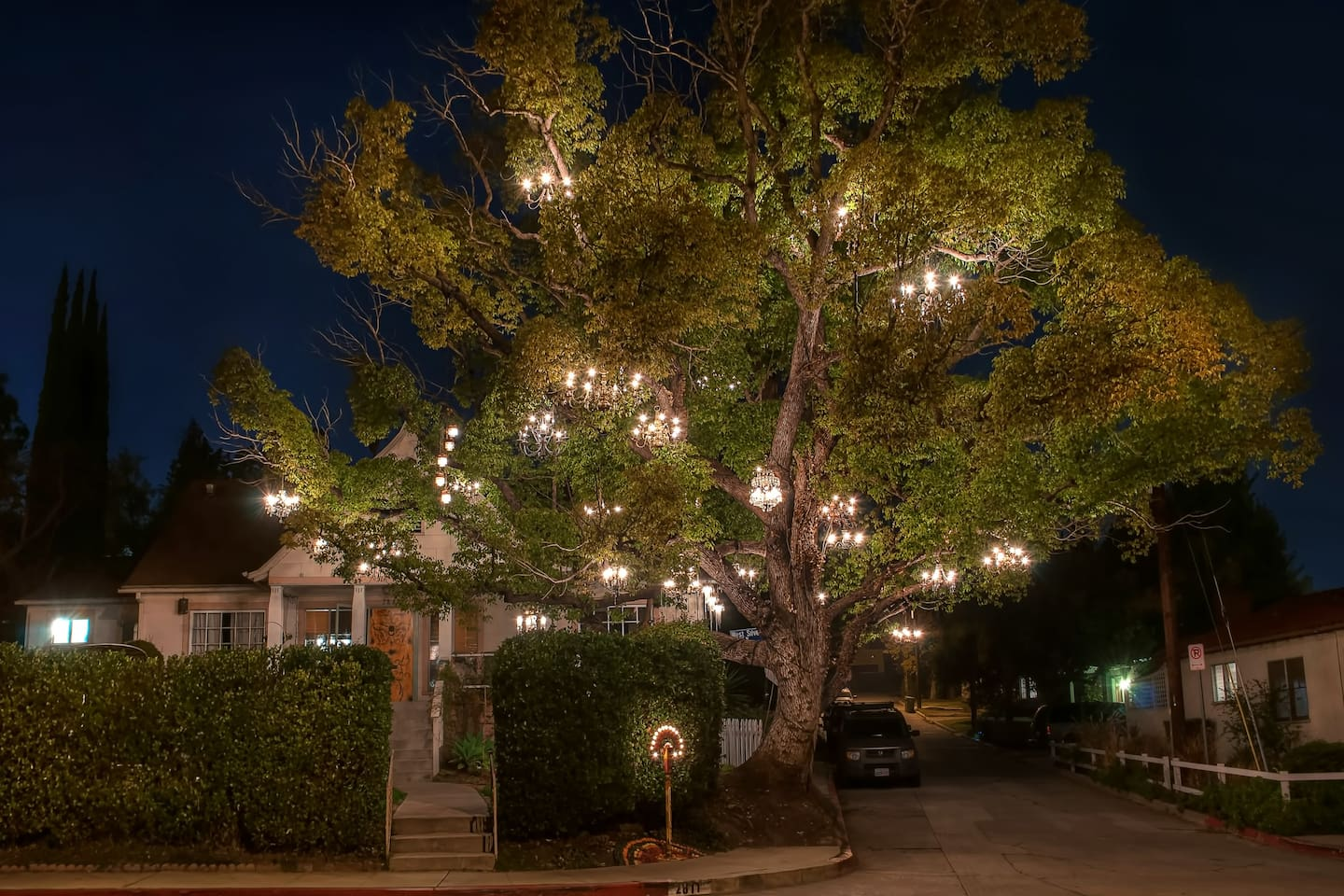 The Chandelier Tree. House. - Houses for Rent in Los Angeles ...