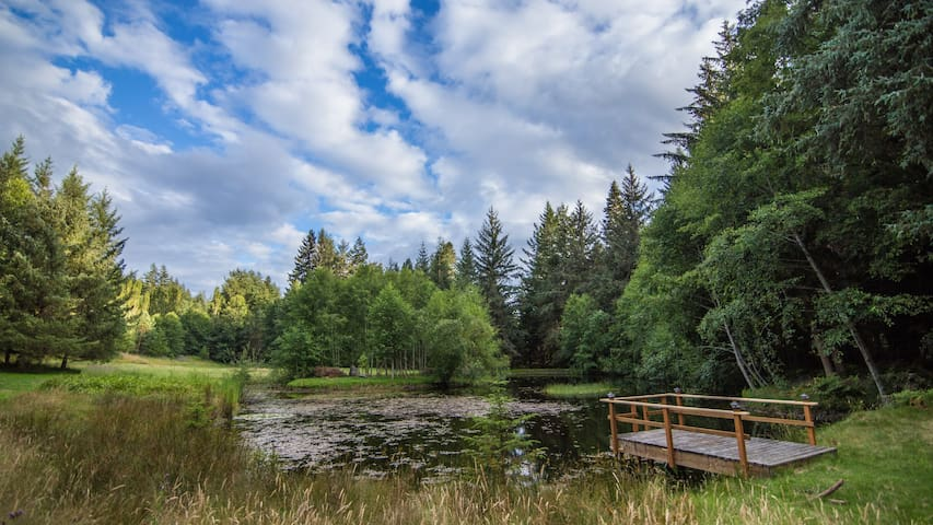 Total Privacy on 25 Acres of Orcas Island Woodland