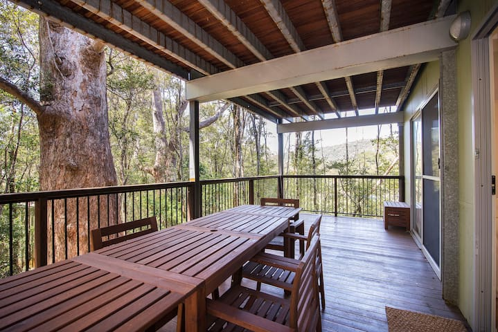 Treefern Retreat, Springbrook,