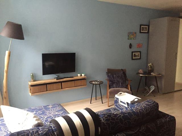 Cozy good located apartment