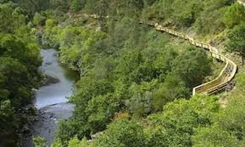 River Paiva Walkways