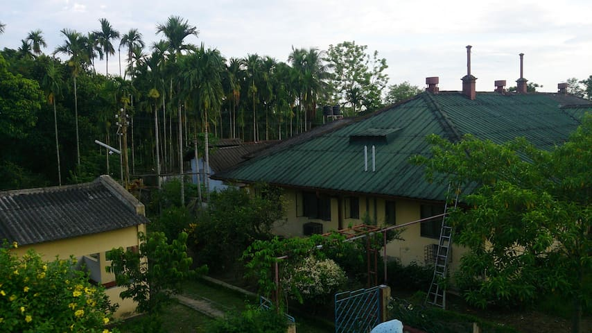 The Bungalow, Your Stay! Surrounded by a dense cover of avenue trees!