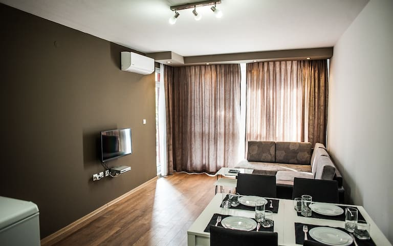 Charming and cosy 1BR apartment - Hisarya