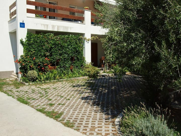 Green oasis, parking space