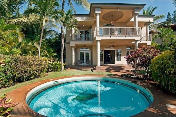 Kohola Villa - Hawaii - Dům