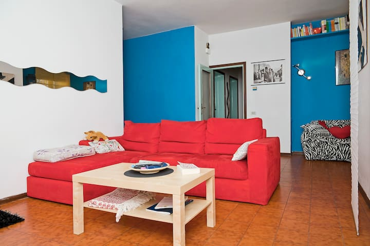 Double room with shared spaces in South Viareggio - Viareggio- torre del lago - Huoneisto