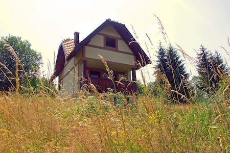 Mountain House Thalia - Bajina Basta, mountain Tara