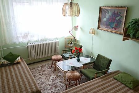 Private spacious sunny apartment, quiet location