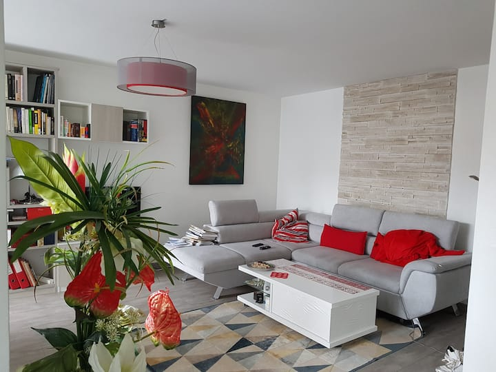 Lovely Flat 105m² to share well - center Hagueanau
