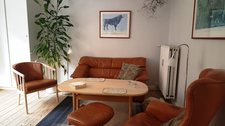 Lovely apartment near the center of Copenhagen
