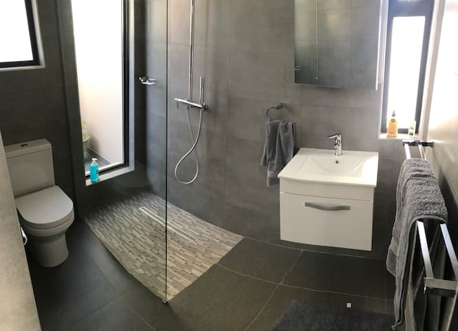 Toilet, shower and basin