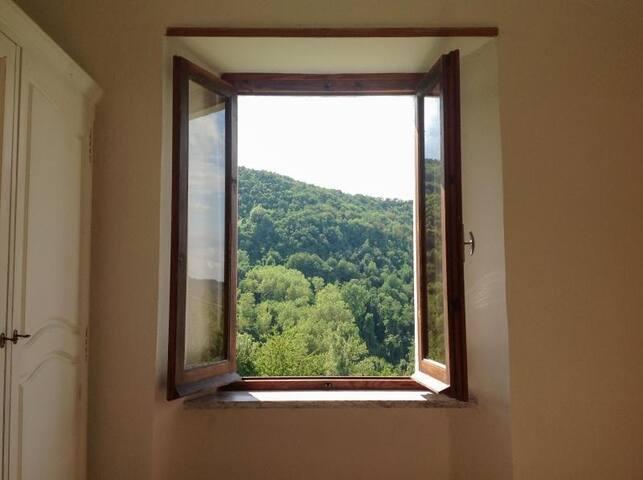 View from room Venezia