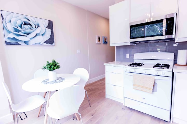 Beautiful queen west apartment with deck & parking