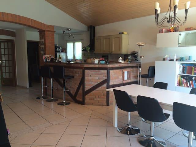 Möbilierte 19 qm + WZ + Bad + Küche - La Salvetat-Saint-Gilles - Casa