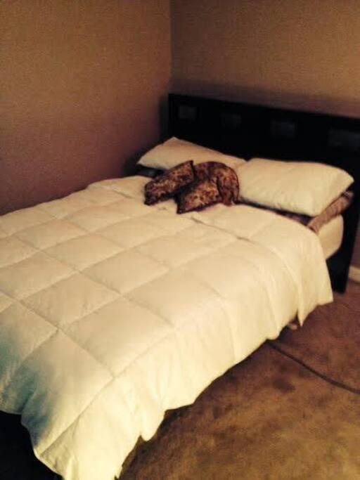 queen bed, very nice bed