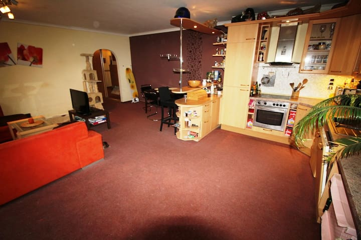 cosy flat 15 min from the centre of Prague