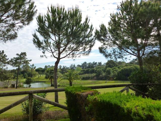 Vista al golf desde el salón