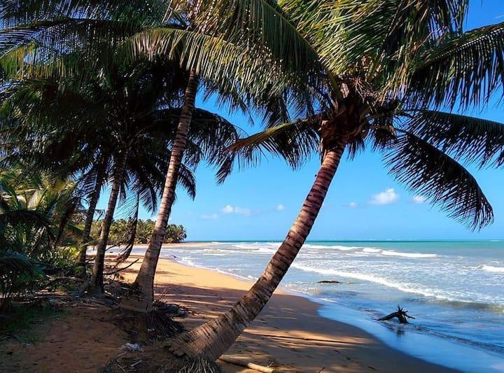 Wyndham Grande Rio Mar Beach and Golf Resort