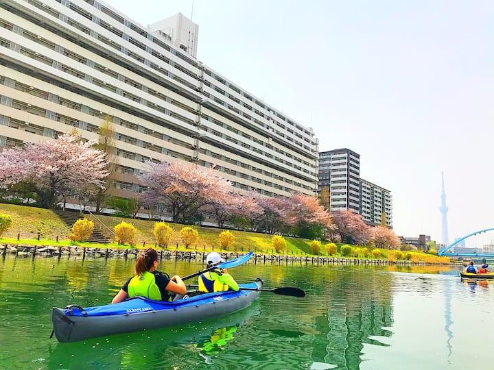 Paddling in cherry blossoms season.