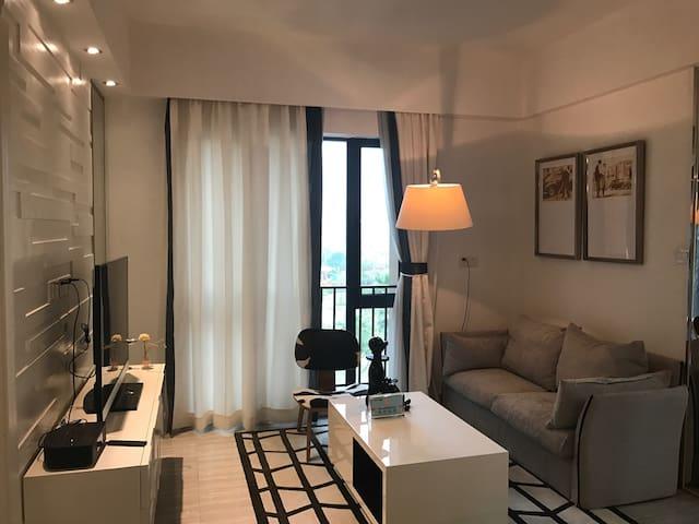 舒适的现代时尚简约欧式精致公寓一房一厅 - 东莞 - Apartment