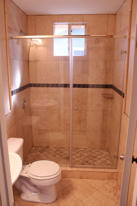 Glass shower with stone