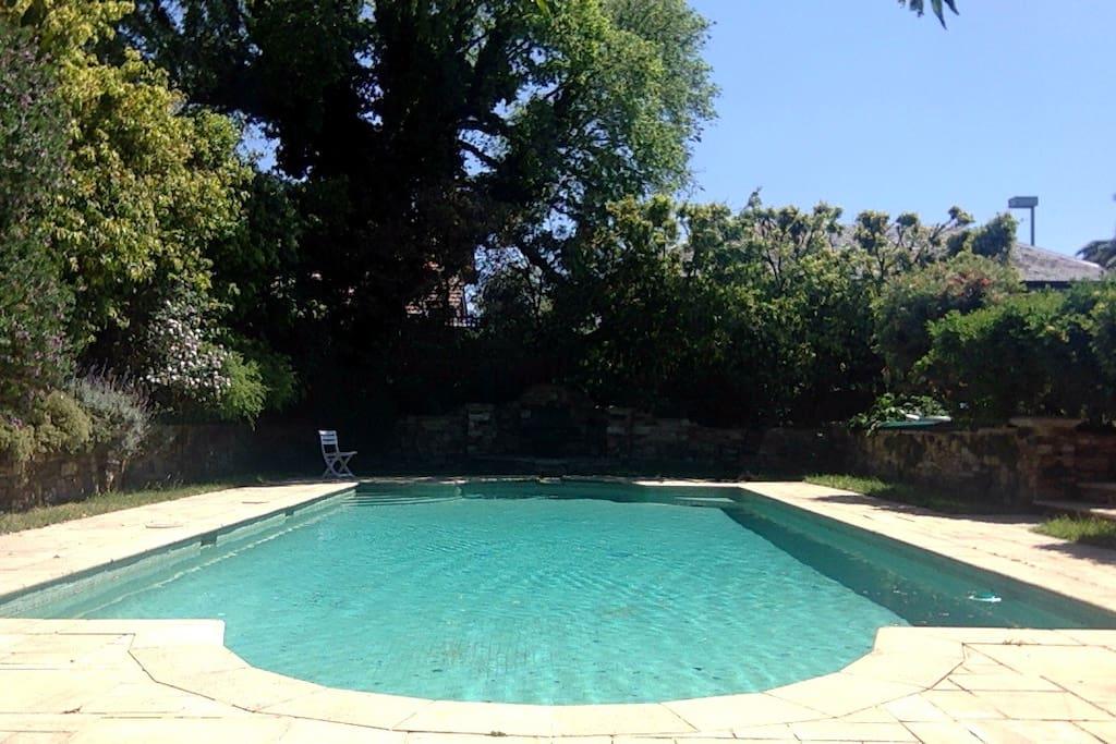 15 m pool
