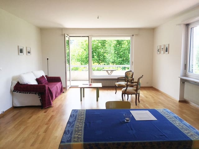 4 min. walk to the Goetheanum (whole apartment)
