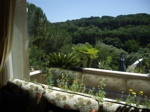 Ampia camera doppia bagno en suite - Rzym - Dom