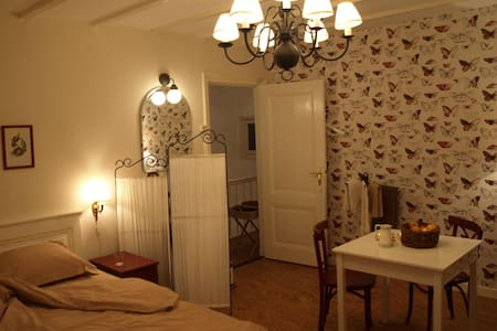 TheHagueMansion City&Beach TopFloor - La Haye - Bed & Breakfast