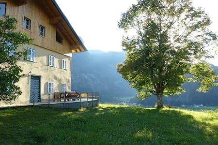 Farmhouse Untermoas - Abtenau - Dům