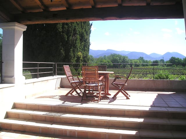 Charming old mas, gorgeous envrnmt - Valréas - Apartamento